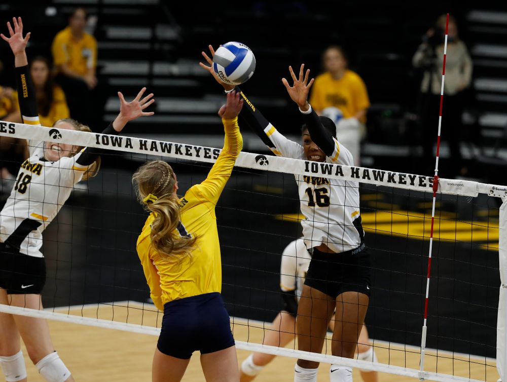 Iowa Hawkeyes outside hitter Taylor Louis (16) against the Michigan Wolverines Sunday, September 23, 2018 at Carver-Hawkeye Arena. (Brian Ray/hawkeyesports.com)