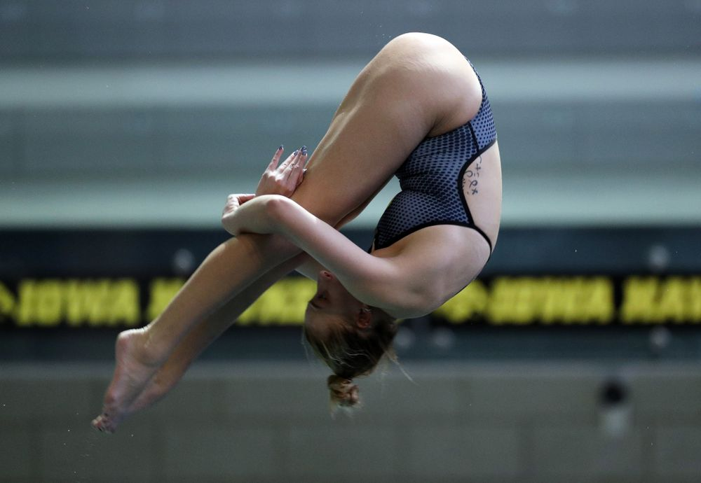 IowaÕs Samantha Tamborski competes on the 1-meter springboard against the Michigan Wolverines Friday, November 1, 2019 at the Campus Recreation and Wellness Center. (Brian Ray/hawkeyesports.com)