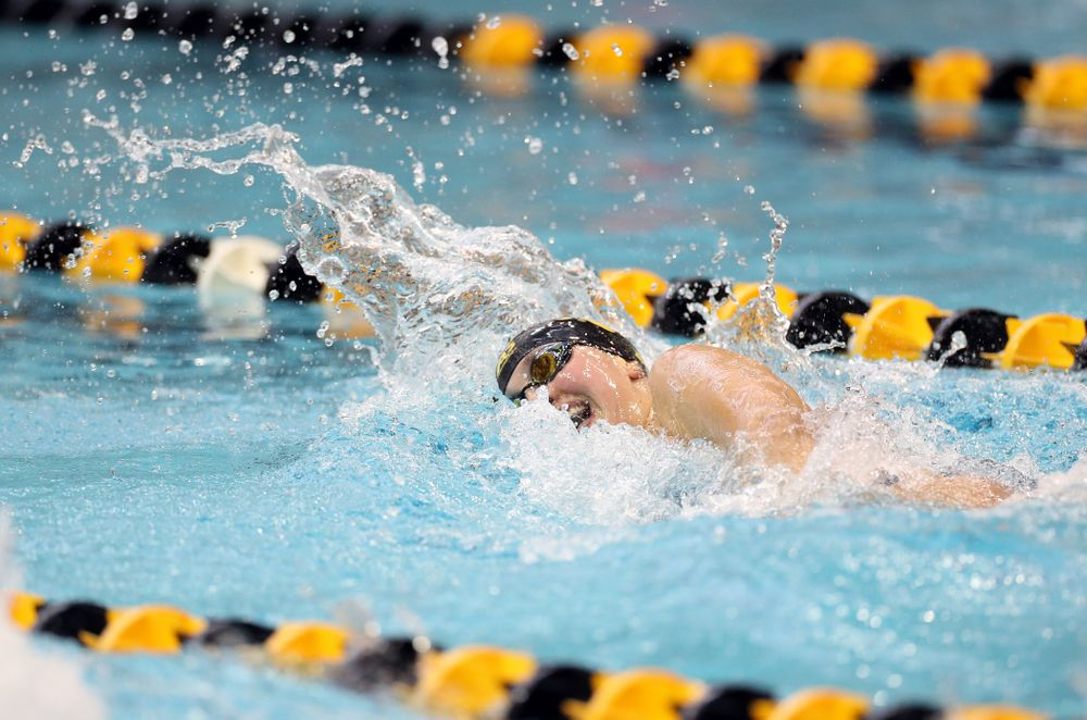 IowaÕs Hanna Burvill swims the 200 yard freestyle agains the Michigan Wolverines Friday, November 1, 2019 at the Campus Recreation and Wellness Center. (Brian Ray/hawkeyesports.com)