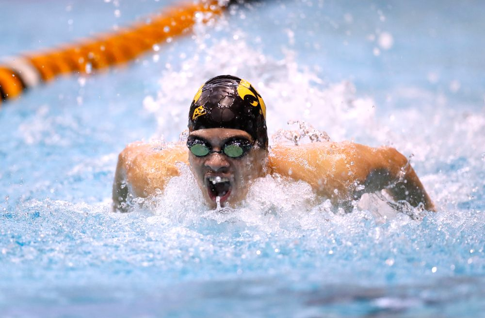 Matjaz Rozman swims the 100 yard butterfly during the Black and Gold Intrasquad Saturday, September 29, 2018 at the Campus Recreation and Wellness Center. (Brian Ray/hawkeyesports.com)