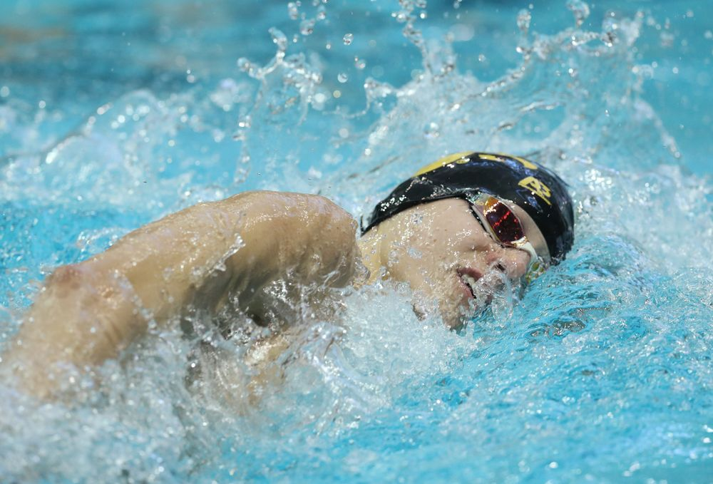 Iowa's Andrew Fierke swims the 500 yard freestyle Thursday, November 15, 2018 during the 2018 Hawkeye Invitational at the Campus Recreation and Wellness Center. (Brian Ray/hawkeyesports.com)