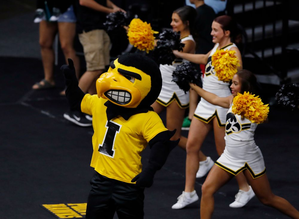 Herky the Hawk against Eastern Illinois Sunday, September 9, 2018 at Carver-Hawkeye Arena. (Brian Ray/hawkeyesports.com)