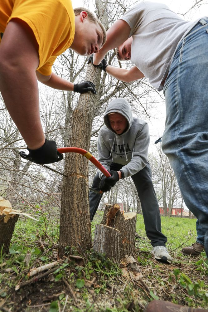 Members of the Hawkeye Football team volunteer with the Iowa City Public Works department along the Iowa River during the annual Iowa Athletics Day of Caring  Sunday, April 28, 2019 in Iowa City. (Brian Ray/hawkeyesports.com)