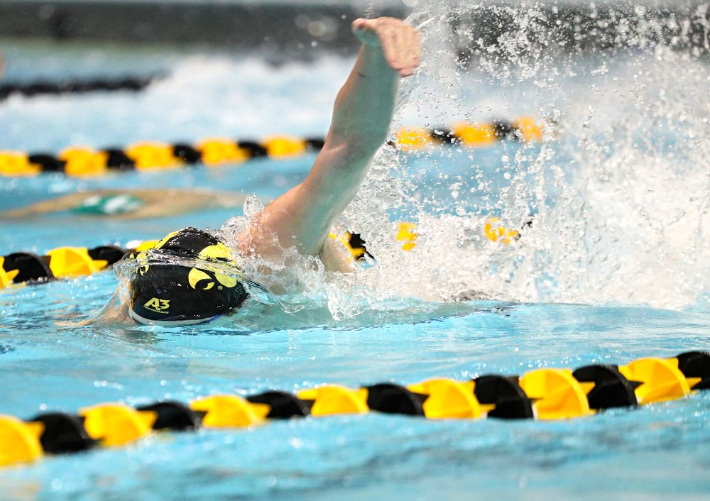 Iowa's Joe Myhre swims the freestyle section of the men's 200-yard medley relay event during their meet against Michigan State and Northern Iowa at the Campus Recreation and Wellness Center in Iowa City on Friday, Oct 4, 2019. (Stephen Mally/hawkeyesports.com)