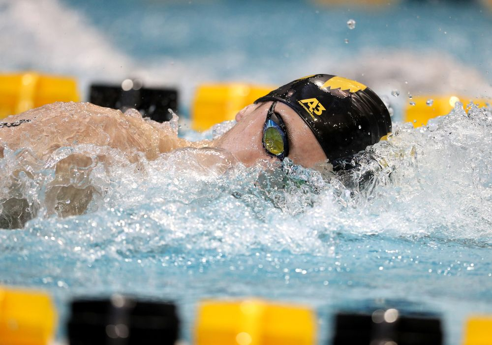 Iowa's Aleksey Tarasenko swims the 200 yard freestyle during a double dual against Wisconsin and Northwestern Saturday, January 19, 2019 at the Campus Recreation and Wellness Center. (Brian Ray/hawkeyesports.com)