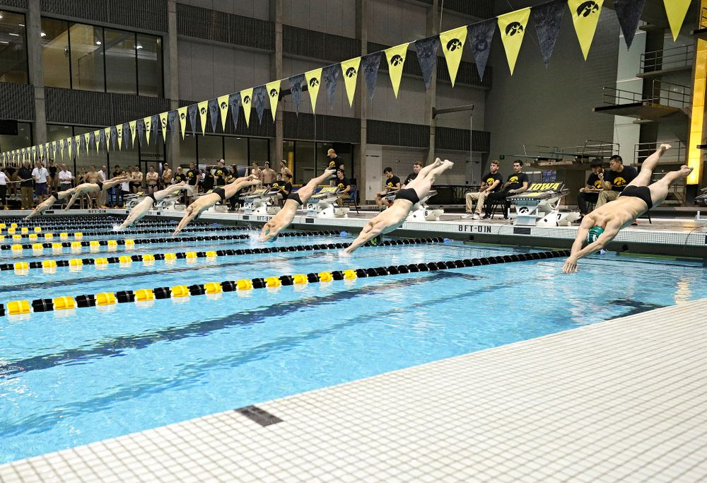 Swimmers dive into the poole for the 100-yard individual medley event during their meet against Michigan State at the Campus Recreation and Wellness Center in Iowa City on Thursday, Oct 3, 2019. (Stephen Mally/hawkeyesports.com)