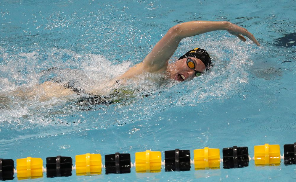 Iowa's Allyssa Fluit competes in the 500-yard freestyle during a meet against Michigan and Denver at the Campus Recreation and Wellness Center on November 3, 2018. (Tork Mason/hawkeyesports.com)