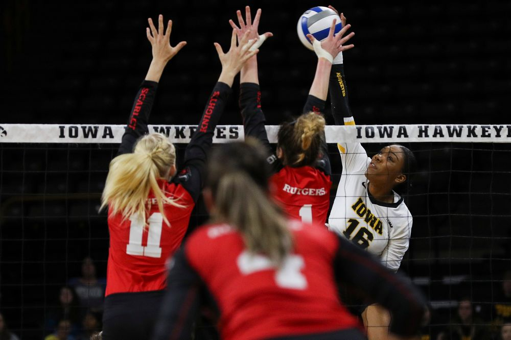 Iowa Hawkeyes outside hitter Taylor Louis (16) spikes the ball during a match against Rutgers at Carver-Hawkeye Arena on November 2, 2018. (Tork Mason/hawkeyesports.com)