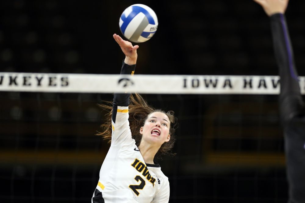 Iowa Hawkeyes setter Courtney Buzzerio (2) against Lipscomb Friday, September 20, 2019 at Carver-Hawkeye Arena. (Brian Ray/hawkeyesports.com)