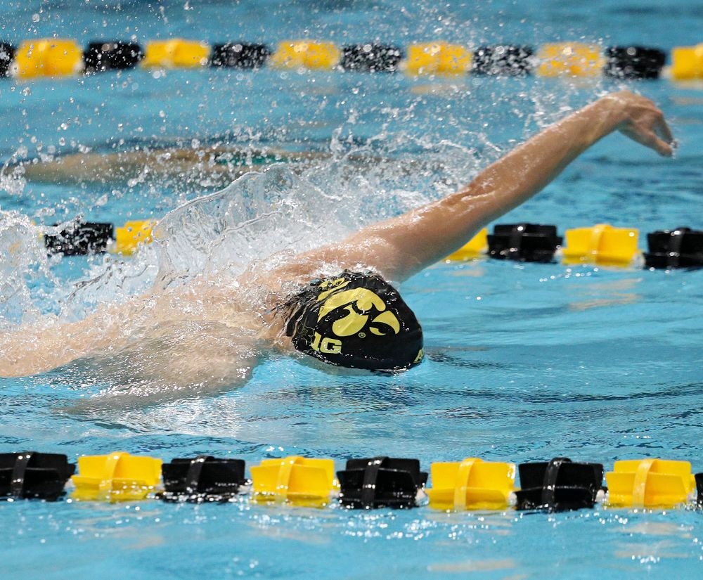 Iowa's Michael Tenney swims his section of the men's 200-yard freestyle relay event during their meet against Michigan State at the Campus Recreation and Wellness Center in Iowa City on Thursday, Oct 3, 2019. (Stephen Mally/hawkeyesports.com)