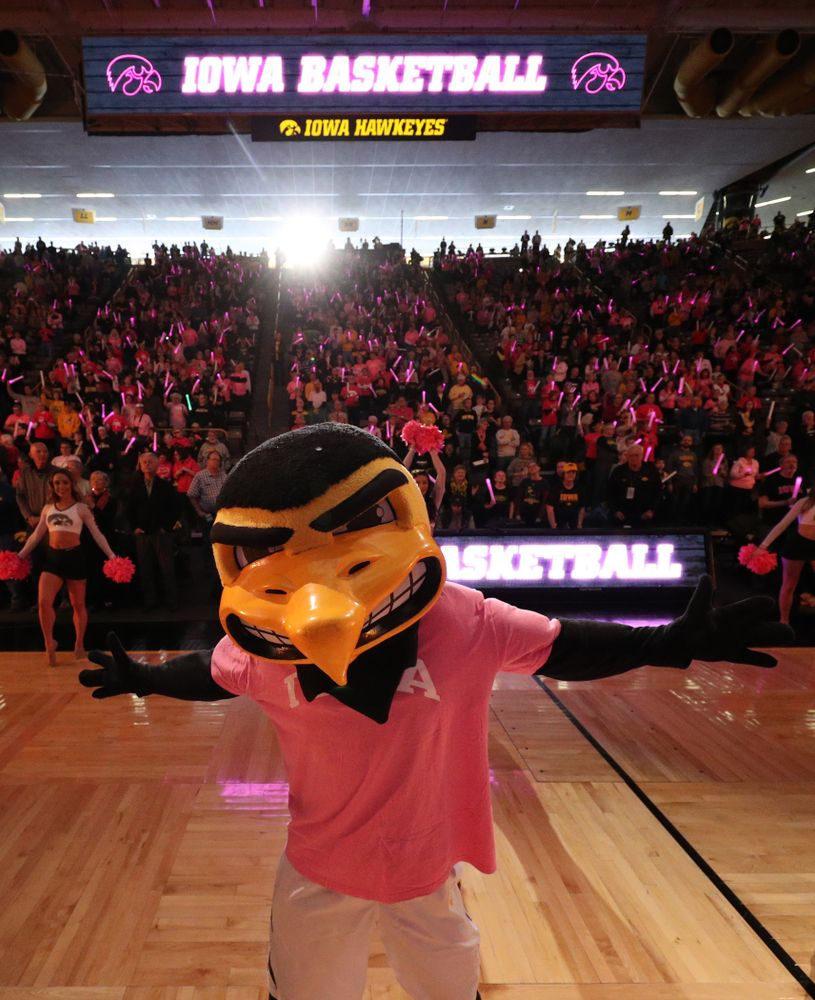 Herky The Hawk against the seventh ranked Maryland Terrapins Sunday, February 17, 2019 at Carver-Hawkeye Arena. (Brian Ray/hawkeyesports.com)
