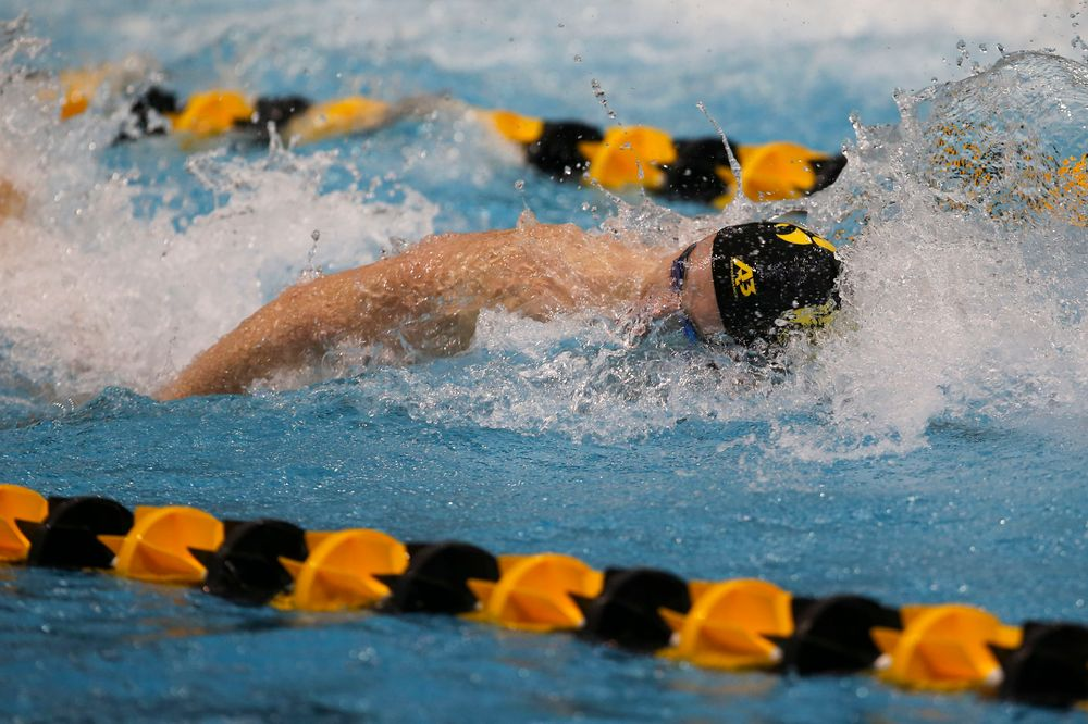 Iowa's Joe Myhre during Iowa swim and dive vs Minnesota on Saturday, October 26, 2019 at the Campus Wellness and Recreation Center. (Lily Smith/hawkeyesports.com)