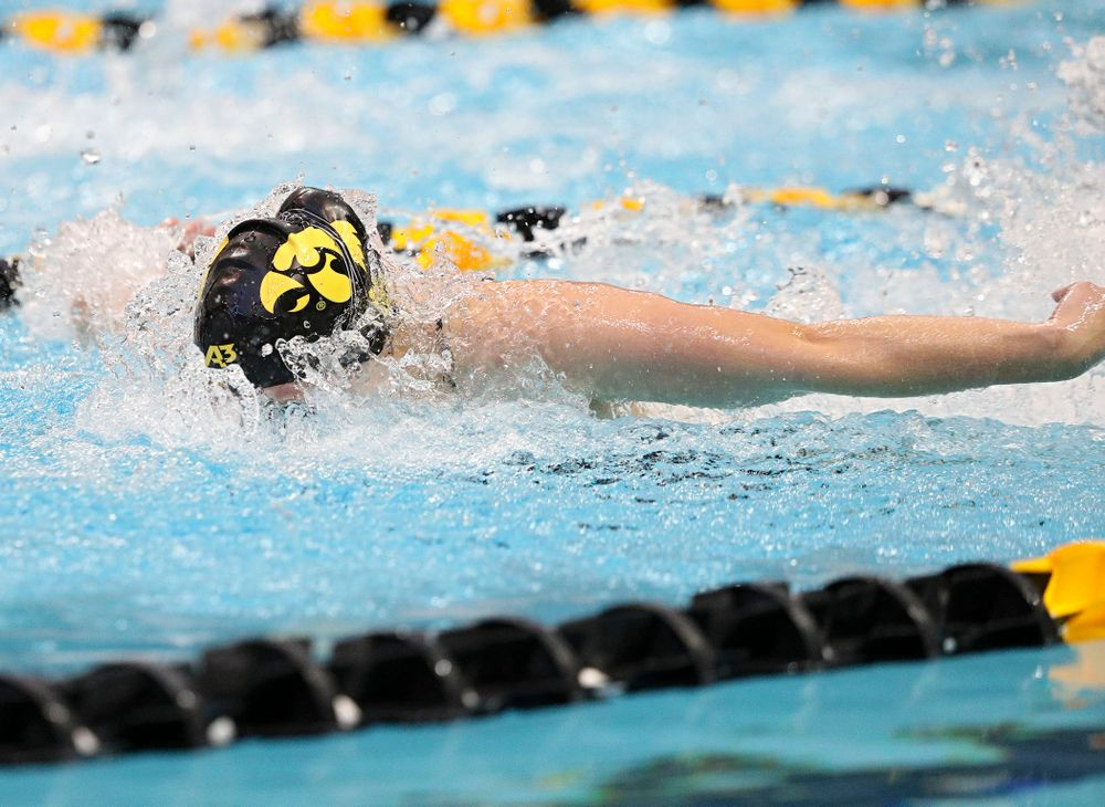 Iowa's Kelsey Drake swims the butterfly section of the women's 200-yard medley relay event during their meet against Michigan State and Northern Iowa at the Campus Recreation and Wellness Center in Iowa City on Friday, Oct 4, 2019. (Stephen Mally/hawkeyesports.com)