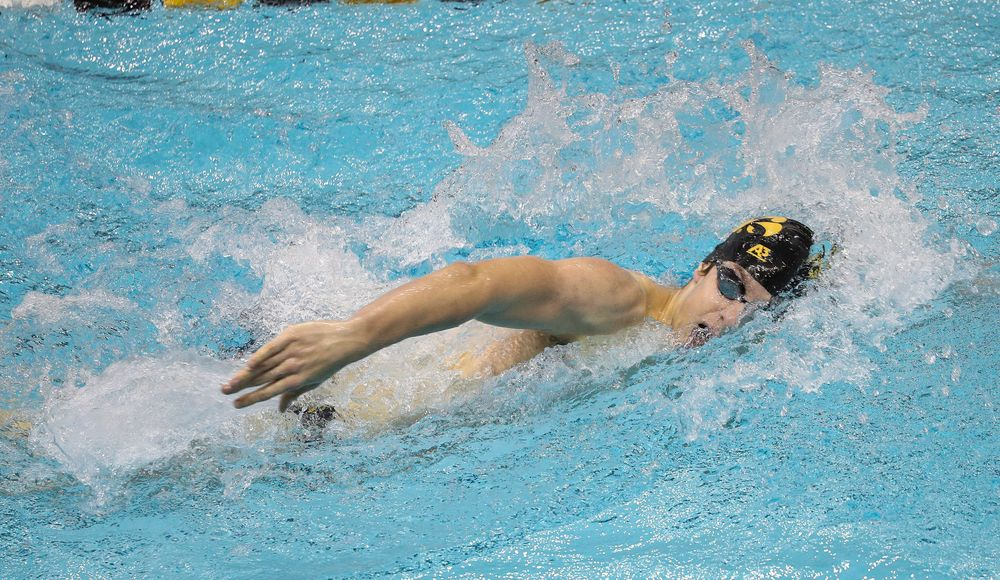 Iowa's Jackson Allmon competes in the 500-yard freestyle during a meet against Michigan and Denver at the Campus Recreation and Wellness Center on November 3, 2018. (Tork Mason/hawkeyesports.com)