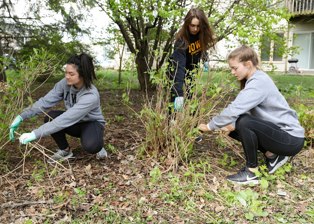 Iowa women's gymnasts work outside the 1876 Coralville Schoolhouse during the 21st annual ISAAC Hawkeye Day of Caring in Coralville on Sunday, Apr. 28, 2019. (Stephen Mally/hawkeyesports.com)