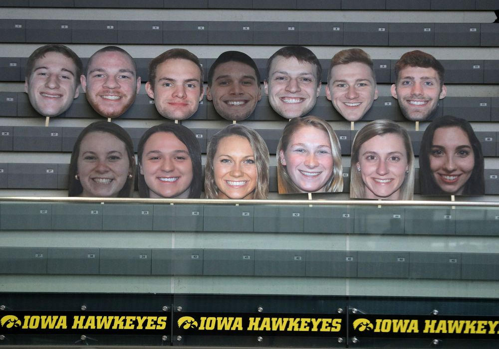Fat Heads of the Hawkeye Swimming and Diving seniors during a double dual against Wisconsin and Northwestern Saturday, January 19, 2019 at the Campus Recreation and Wellness Center. (Brian Ray/hawkeyesports.com)