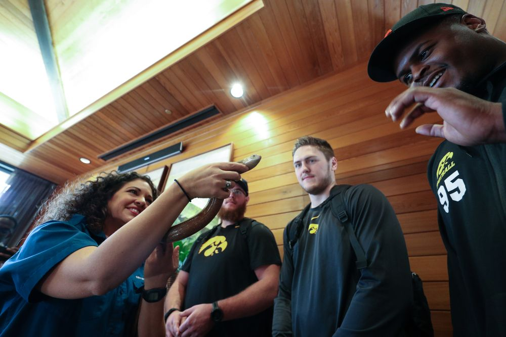 Iowa Hawkeyes offensive lineman Landan Paulsen (68), offensive lineman Levi Paulsen (66), linebacker Nick Niemann (49), and defensive lineman Cedrick Lattimore (95) check out a legless lizard during a trip to the San Diego Zoo Wednesday, December 25, 2019 in San Diego. (Brian Ray/hawkeyesports.com)