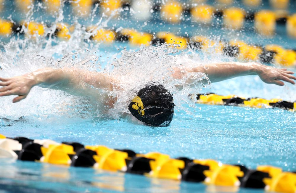 Iowa's Michal Brzus swims the butterfly leg of the 200-yard medley relay at the 2019 Big Ten Swimming and Diving meet  Wednesday, February 27, 2019 at the Campus Wellness and Recreation Center. (Brian Ray/hawkeyesports.com)